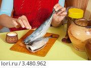 Купить «Женщина готовит скумбрию», фото № 3480962, снято 3 августа 2020 г. (c) Яков Филимонов / Фотобанк Лори