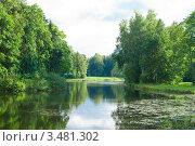 Купить «Летний пейзаж с озером», фото № 3481302, снято 10 сентября 2011 г. (c) Лагутин Сергей / Фотобанк Лори