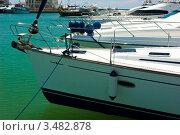 Купить «Яхты», фото № 3482878, снято 8 мая 2008 г. (c) Дмитрий Наумов / Фотобанк Лори
