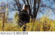 Осенние прогулки. Стоковое видео, видеограф Павел Меняйло / Фотобанк Лори