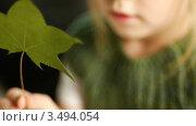 Сухой лист в руках девочки. Стоковое видео, видеограф Павел Меняйло / Фотобанк Лори