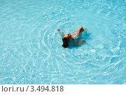 Девочка плавает в бассейне. Стоковое фото, фотограф Емельянова Карина / Фотобанк Лори