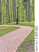 Купить «Пешеходная дорожка в парке «Царицыно»», фото № 3499682, снято 6 мая 2012 г. (c) Владимир Сергеев / Фотобанк Лори