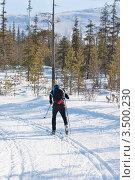 Купить «Мужчина на беговых лыжах бежит по лыжне в лесу», фото № 3500230, снято 6 апреля 2012 г. (c) Руслан Кудрин / Фотобанк Лори