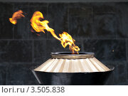 Купить «Вечный огонь», фото № 3505838, снято 29 марта 2020 г. (c) Валерий Шилов / Фотобанк Лори