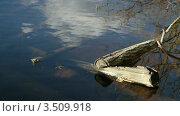 Лестница в озере крупно. Стоковое видео, видеограф Андрей Леонидов / Фотобанк Лори