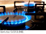 Горящая газовая конфорка крупным планом. Стоковое фото, фотограф Хромушин Тарас / Фотобанк Лори