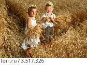 Двое детей стоят в поле пшеницы (2011 год). Редакционное фото, фотограф Емельянова Карина / Фотобанк Лори