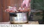Купить «Барбекю на решетке», видеоролик № 3524794, снято 20 июня 2008 г. (c) Losevsky Pavel / Фотобанк Лори