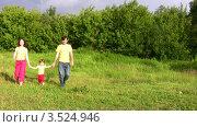 Купить «Мама, папа и дочка гуляют по зеленому лугу на опушке леса», видеоролик № 3524946, снято 2 июля 2008 г. (c) Losevsky Pavel / Фотобанк Лори