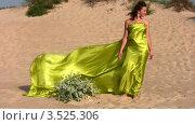 Купить «Девушка с зеленой тканью, развевающейся на ветру, стоит на песочном пляже», видеоролик № 3525306, снято 2 сентября 2008 г. (c) Losevsky Pavel / Фотобанк Лори