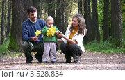 Купить «Родители с сыном в осеннем парке», видеоролик № 3528834, снято 7 октября 2008 г. (c) Losevsky Pavel / Фотобанк Лори