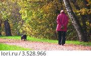 Купить «Пожилая женщина прогуливается в осеннем парке с собакой», видеоролик № 3528966, снято 8 октября 2008 г. (c) Losevsky Pavel / Фотобанк Лори