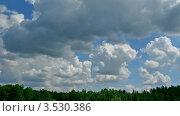 Купить «Облака плывут над лесом летом. Таймлапс», видеоролик № 3530386, снято 17 сентября 2009 г. (c) Losevsky Pavel / Фотобанк Лори