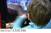 Купить «Мальчик играет в компьютерную игру в автомате», видеоролик № 3530546, снято 8 декабря 2008 г. (c) Losevsky Pavel / Фотобанк Лори