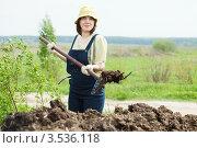 Женщина удобряет огород навозом. Стоковое фото, фотограф Яков Филимонов / Фотобанк Лори