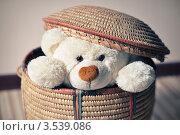 Купить «Мягкий игрушечный мишка выглядывает из плетеной корзины», фото № 3539086, снято 23 мая 2012 г. (c) Елена Шуршилина / Фотобанк Лори