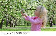 Купить «Девочка играет с цветкам дерева», видеоролик № 3539506, снято 26 мая 2009 г. (c) Losevsky Pavel / Фотобанк Лори