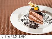 Купить «Шоколадный торт с физалисом», фото № 3542694, снято 17 апреля 2012 г. (c) CandyBox Images / Фотобанк Лори
