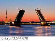 Купить «Символ Санкт-Петербурга - разведённый Дворцовый мост», эксклюзивное фото № 3544678, снято 15 мая 2012 г. (c) Литвяк Игорь / Фотобанк Лори