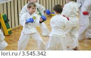Купить «Дети занимаются карате в зале», видеоролик № 3545342, снято 28 октября 2009 г. (c) Losevsky Pavel / Фотобанк Лори