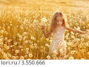 Купить «Шестилетняя девочка гуляет по лугу с одуванчиками», фото № 3550666, снято 22 мая 2012 г. (c) Майя Крученкова / Фотобанк Лори