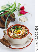 Купить «Вегетарианская окрошка на квасе», фото № 3553402, снято 12 мая 2010 г. (c) Лисовская Наталья / Фотобанк Лори