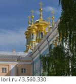Купить «Купола дворцовой церкви в Царском Селе», эксклюзивное фото № 3560330, снято 27 мая 2012 г. (c) Александр Алексеев / Фотобанк Лори