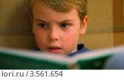 Купить «Мальчик читает книгу», видеоролик № 3561654, снято 1 декабря 2009 г. (c) Losevsky Pavel / Фотобанк Лори