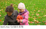 Купить «Мать и дочь собирают осенние кленовые листья», видеоролик № 3561978, снято 22 декабря 2009 г. (c) Losevsky Pavel / Фотобанк Лори