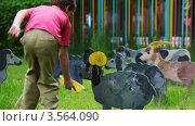 Купить «Мальчик на лужайке с игрушечными разрисованными домашними животными», видеоролик № 3564090, снято 27 февраля 2010 г. (c) Losevsky Pavel / Фотобанк Лори