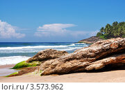 Камни на пляже тропического моря. Стоковое фото, фотограф Галина Власова / Фотобанк Лори