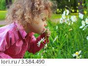 Кудрявая девочка нюхает ромашки в парке. Стоковое фото, фотограф Оленька Винник / Фотобанк Лори