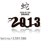 Купить «2013 - год змеи», иллюстрация № 3591586 (c) Юлия Копачева / Фотобанк Лори