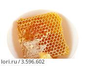 Купить «Соты с мёдом», фото № 3596602, снято 21 июля 2010 г. (c) Jan Jack Russo Media / Фотобанк Лори