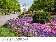 Купить «Краснодар. Платановый бульвар, на заднем плане арка и храм св. Димитрия Солунского», фото № 3598674, снято 18 июня 2012 г. (c) SummeRain / Фотобанк Лори