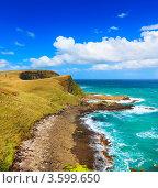 Прибрежный пейзаж с пастбищем. Стоковое фото, фотограф Ольга Хорошунова / Фотобанк Лори