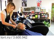 Купить «Парикмахерская, мастер моет голову клиенту», эксклюзивное фото № 3600942, снято 3 августа 2011 г. (c) Дмитрий Неумоин / Фотобанк Лори