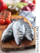 Купить «Свежая рыба на разделочной доске», фото № 3603442, снято 7 апреля 2012 г. (c) Stockphoto / Фотобанк Лори