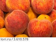 Болгарские персики нового урожая. Стоковое фото, фотограф Владимир Николаевич Гневушев / Фотобанк Лори