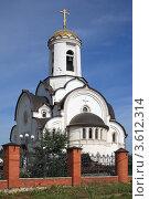 Купить «Елизаветинская церковь», фото № 3612314, снято 22 июня 2012 г. (c) Игорь Веснинов / Фотобанк Лори