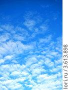 Купить «Легкие кучевые облака на небе (вертикальный фон)», фото № 3613898, снято 13 декабря 2011 г. (c) Анна Мартынова / Фотобанк Лори