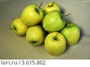 Купить «Кучка яблок», фото № 3615802, снято 1 мая 2010 г. (c) Александр Скопинцев / Фотобанк Лори