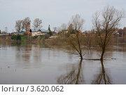 Разлив в Дракино. Стоковое фото, фотограф Евгений Андреев / Фотобанк Лори