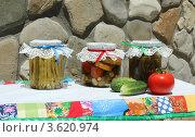 Купить «Мамины разносолы (фасоль, огурцы, помидоры, кабачки, чеснок)», эксклюзивное фото № 3620974, снято 23 июня 2012 г. (c) Юлия Ухина / Фотобанк Лори