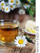 Купить «Травяной чай и лимон», фото № 3621378, снято 19 июня 2012 г. (c) Darkbird77 / Фотобанк Лори