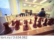 Купить «Деревянные шахматы стоят на доске в комнате шахматного клуба», фото № 3634082, снято 5 марта 2011 г. (c) Losevsky Pavel / Фотобанк Лори