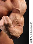 Купить «Мускулистый бодибилдер демонстрирует бицепс», фото № 3635534, снято 2 апреля 2011 г. (c) Losevsky Pavel / Фотобанк Лори