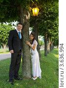 Купить «Счастливые молодожены стоят возле дерева в парке», фото № 3636994, снято 22 июня 2012 г. (c) Сергей Лаврентьев / Фотобанк Лори