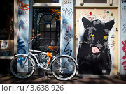 Велосипеды на фоне граффити в Амстердаме (2012 год). Редакционное фото, фотограф Инна Касацкая / Фотобанк Лори